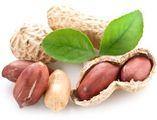 Арахисовый орех оптом и в розницу ООО Флагман
