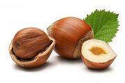 Фундук лесной орех ООО Флагман